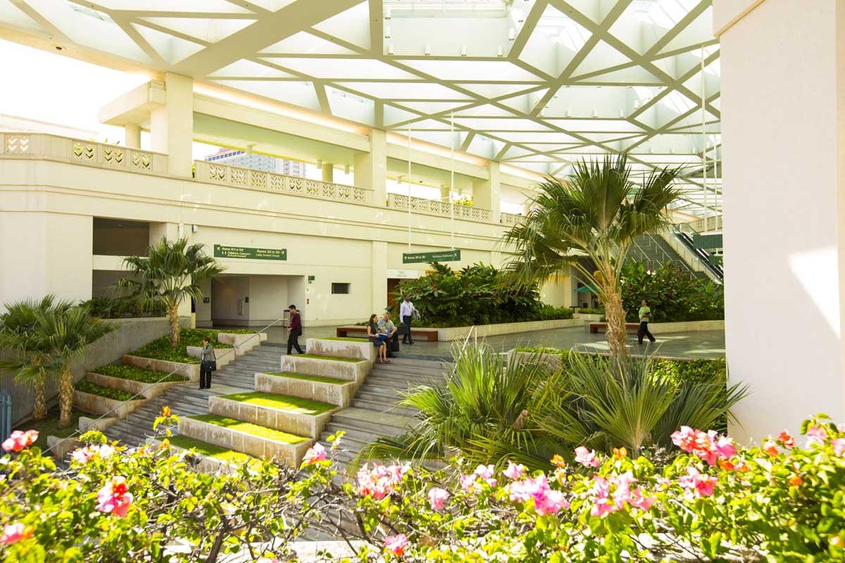 通往 Ala Halawai 中央大厅的大楼梯   建筑设计:Wimberly, Allison, Tong, & Goo
